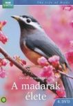 A MADARAK ÉLETE 4. BBC - DVD -