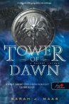TOWER OF DAWN - A HAJNAL TORNYA - FŰZÖTT