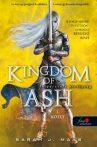 KINGDOM OF ASH - FELPERZSELT KIRÁLYSÁG 1. - FŰZÖTT